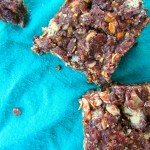 No Bake Cocoa Cranberry Bars