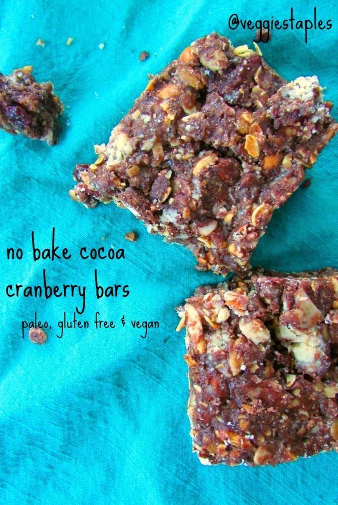 nobakecocoacranberrybars